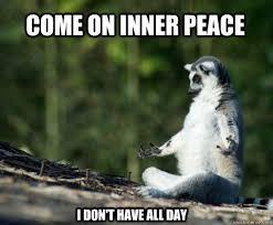 Meditatie niks voor jou?